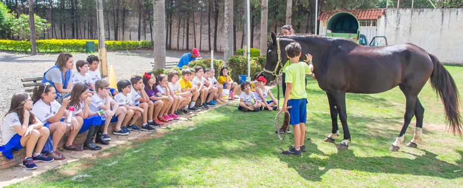 Troca de Saberes do 3º ano promove a equitação lúdica